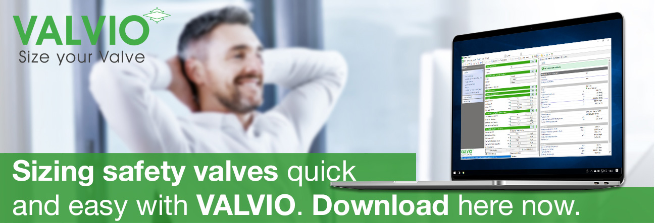 Download sizing software VALVIO now